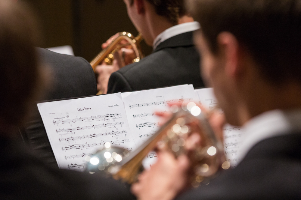 20160521_Brassband Abinchova_Jubila¦êumskonzert im Pfarreiheim in Ebikon_5.jpg