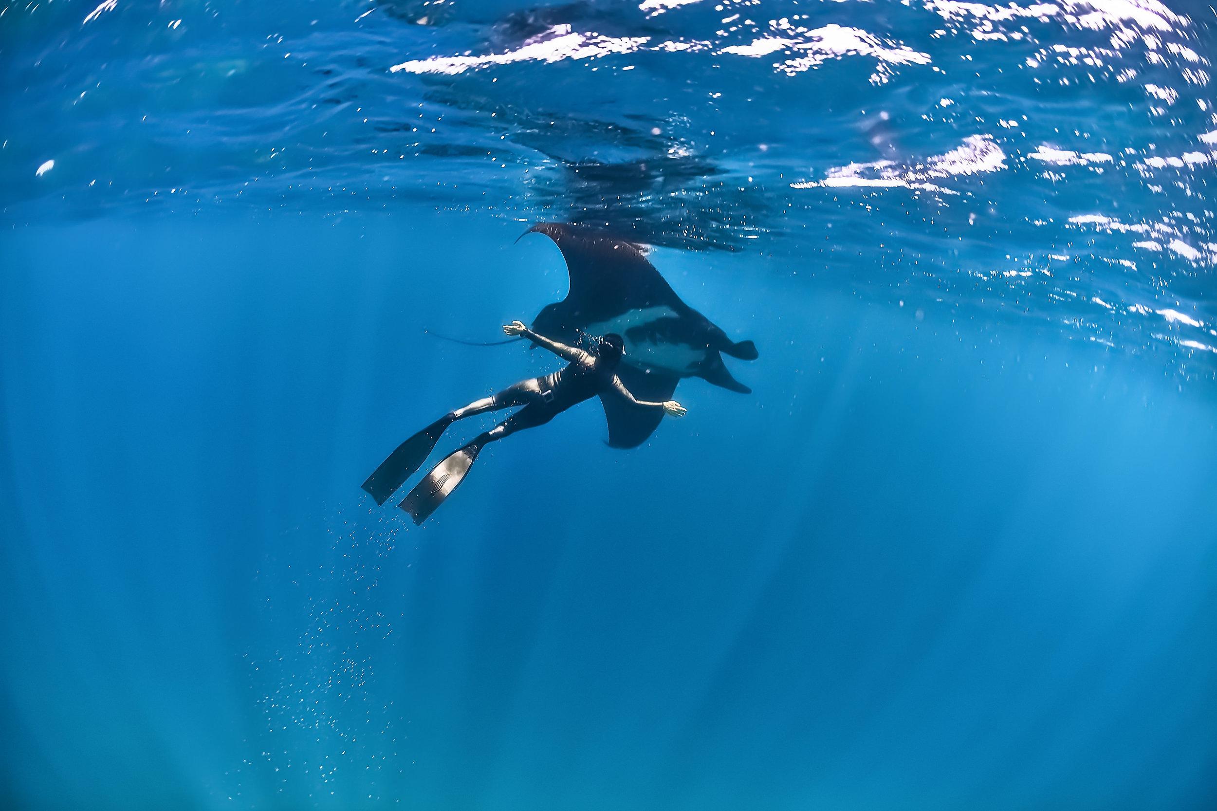 Bali Trip I Am Water Ocean Travel Pure Apnea Level 1 Course Img 3669 Final