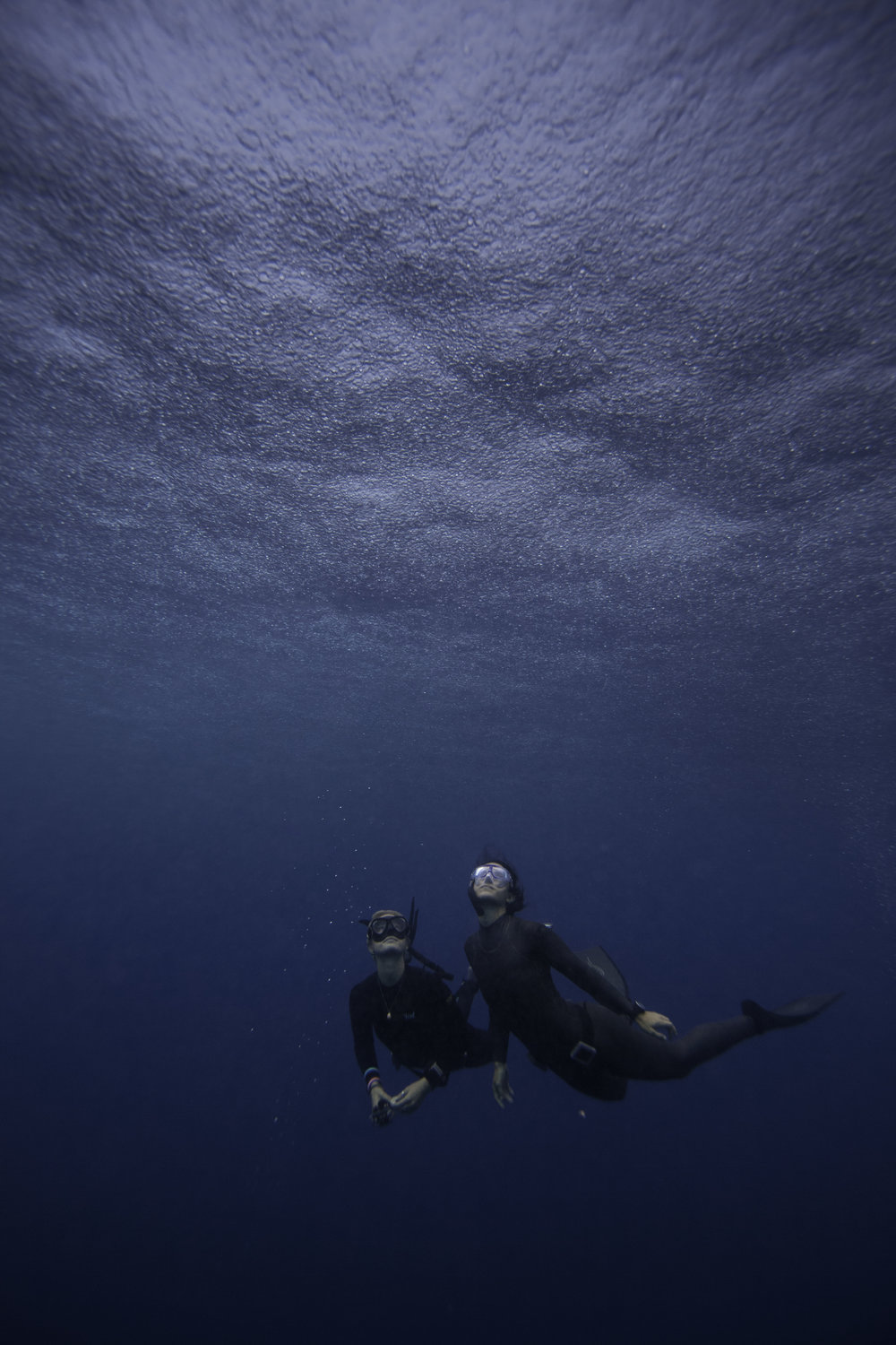 The rain from below - Photographer: Peter Marshall //Freedivers: Hanli Prinsloo & Ocean Ramsay