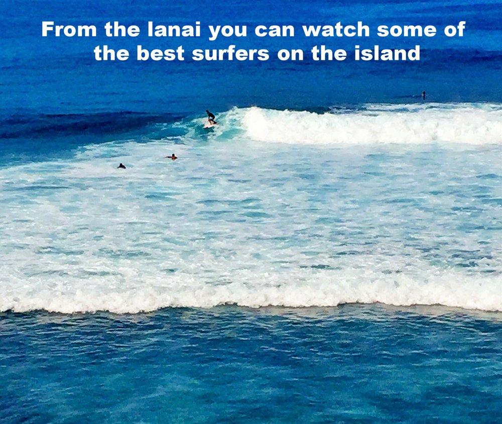SurfersBanyanTree402.jpg