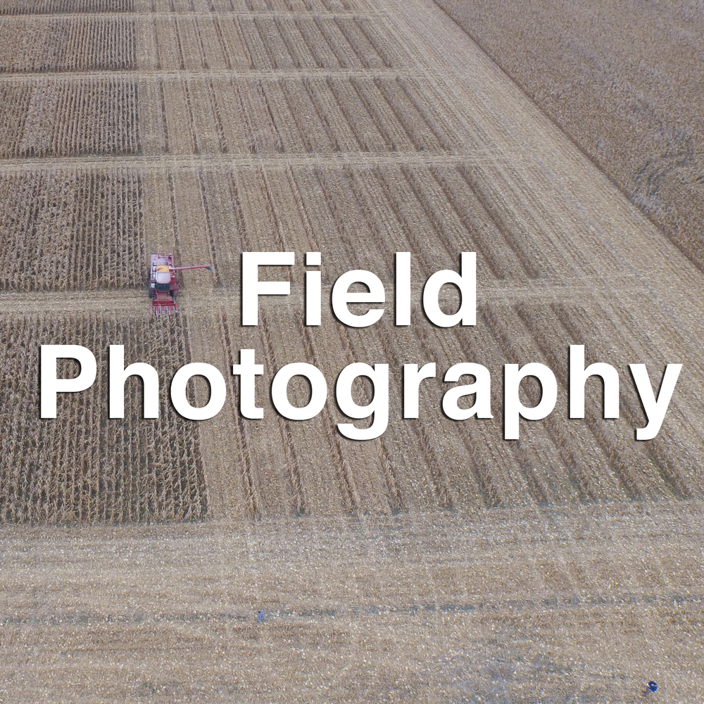 Field Photography