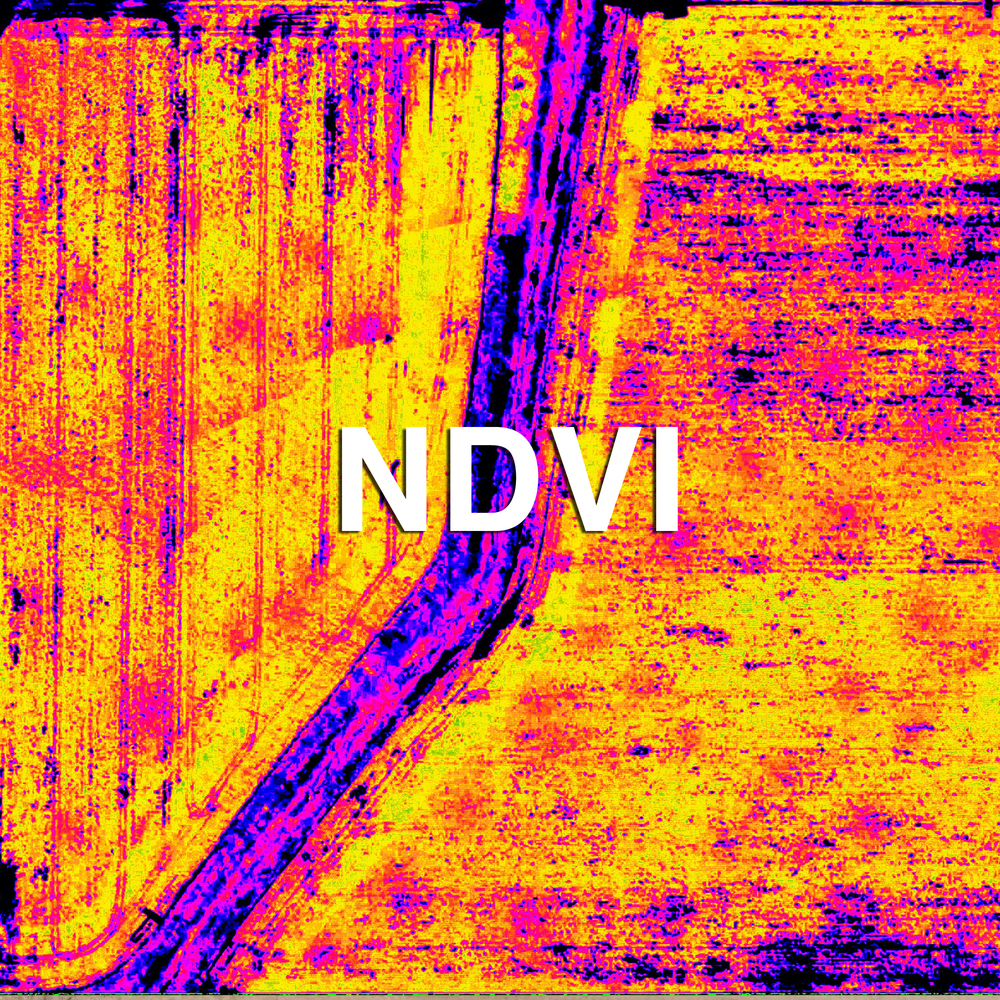 NDVI Mapping