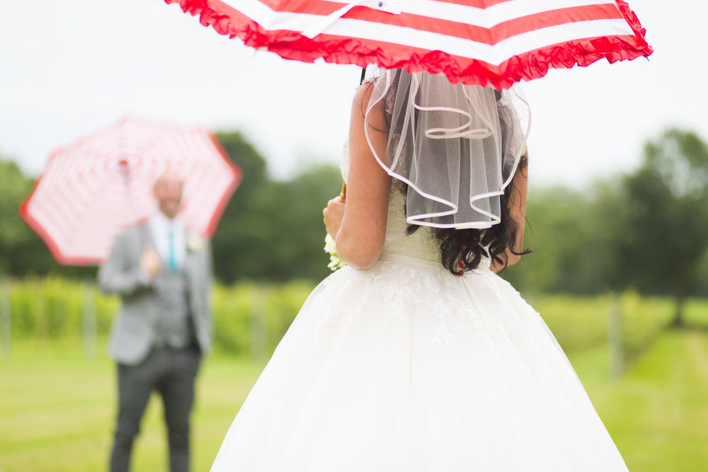 Froginwell-Vinyard-Devon-Wedding-Photography (1).jpg