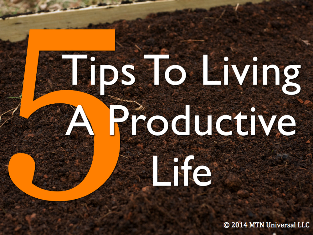 5-Tips-To-Livng-A-Productive-Life.001.jpg