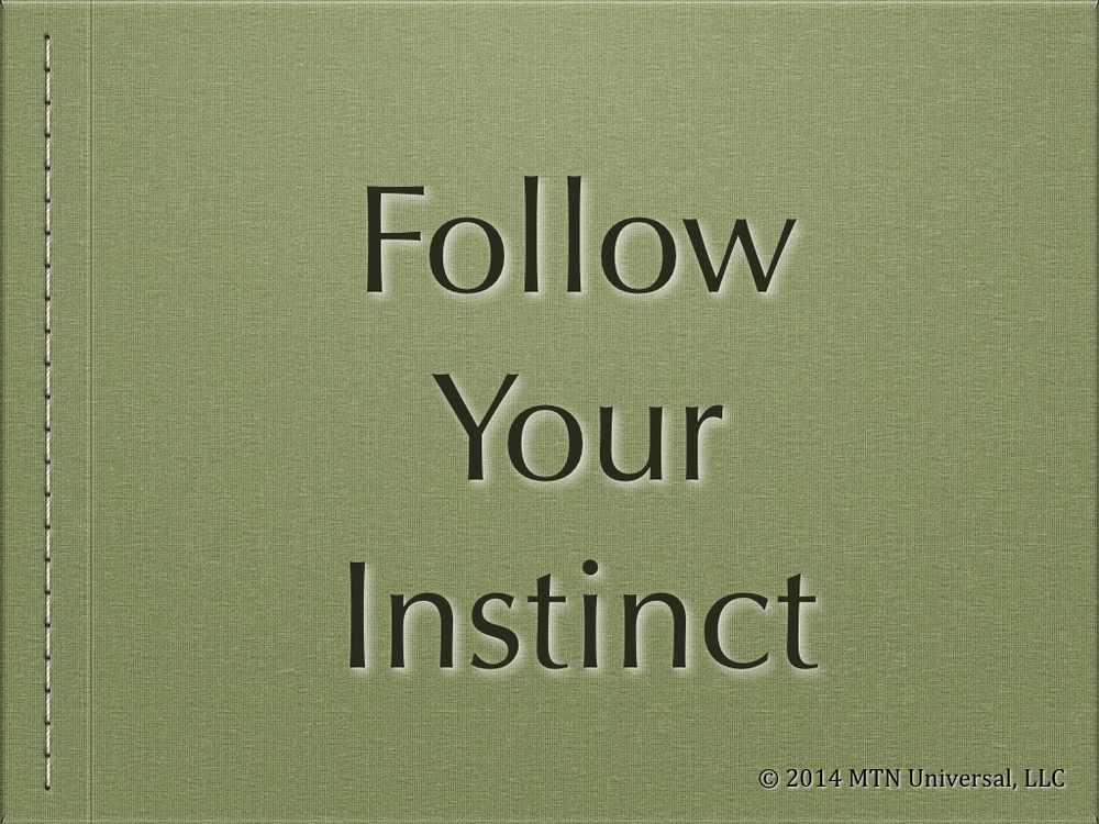 Follow-Your-Instinct.001.jpg
