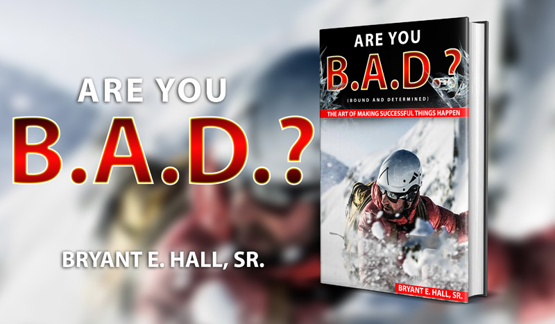 Are You B.A.D.? (Bound And Determined) ebook cover
