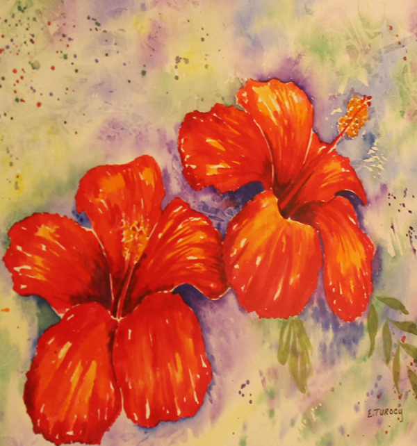 Hibiscus By: Evelyn Turocy