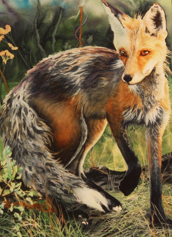 Red Fox; Caught in the Moment By: Barbara Jewell
