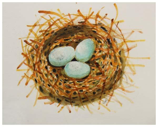 Gary Free, Bird's Nest