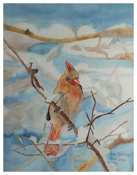 Dan Yaklich, Cardinal in Winter