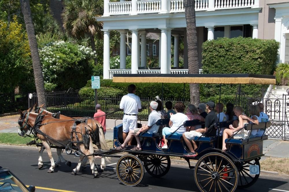 Horse-drawn carriage tour of Charleston, SC