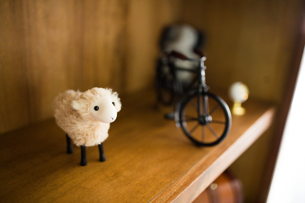 Sheep and Bicycle on Bookcase Shelf in Outdoor Theme Baby Boy Nursery