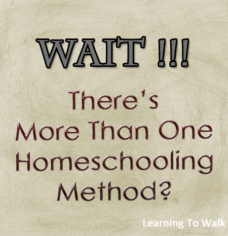 Wait-Theres-more-than-1-homeschool-method-.jpg