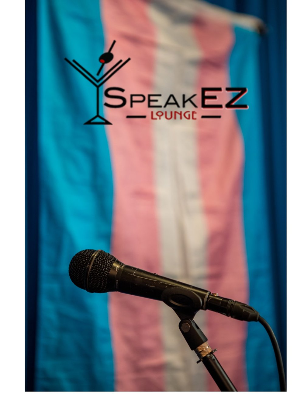 Stories Of Stealth, Activism And Positivity - Speak Ez TDOV Event 3/30/2017