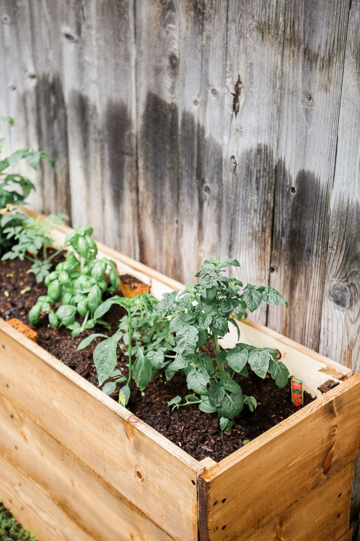 DIY Herb Planter Box-22.jpg
