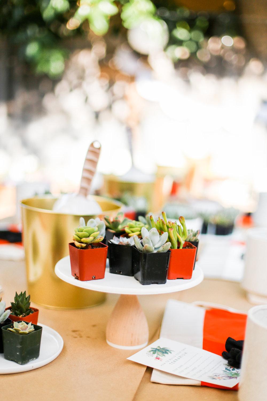 Succulent Party -34.jpg
