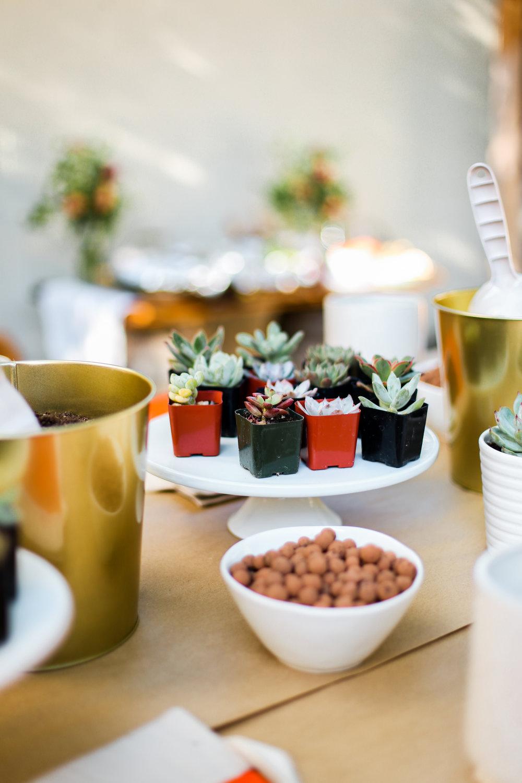 Succulent Party -35.jpg