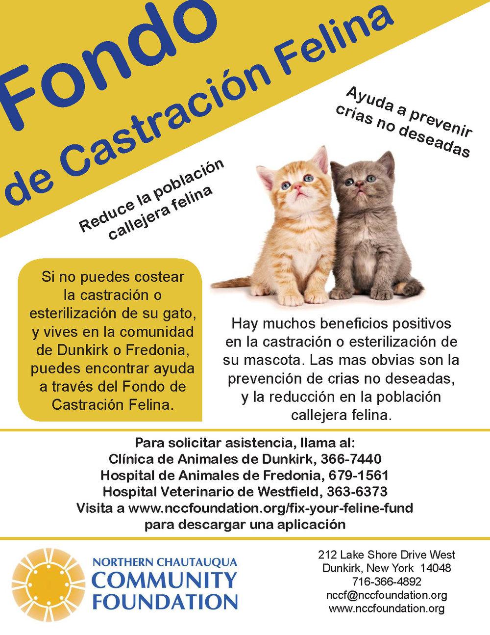 poster spanish 7-31-17.jpg