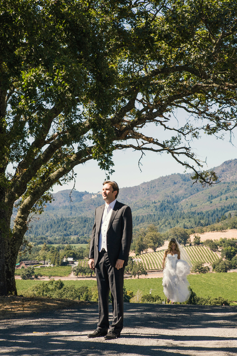 N First Look Sonoma Wedding Vineyards.jpg