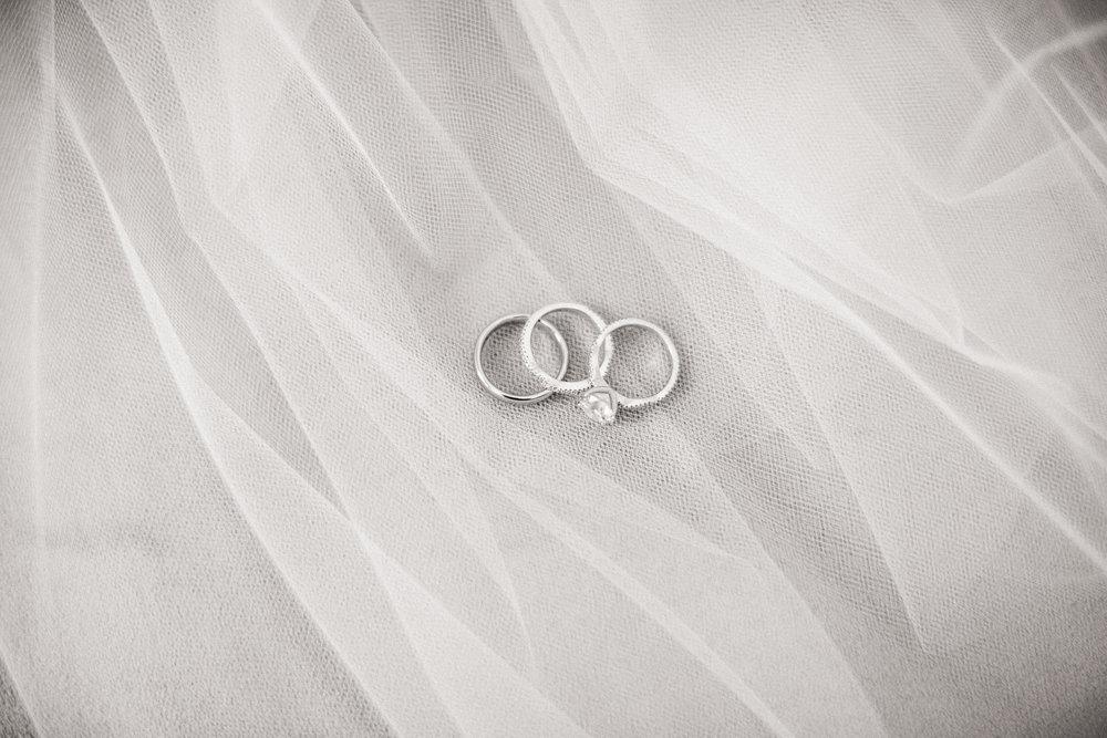 3. Rings.jpg