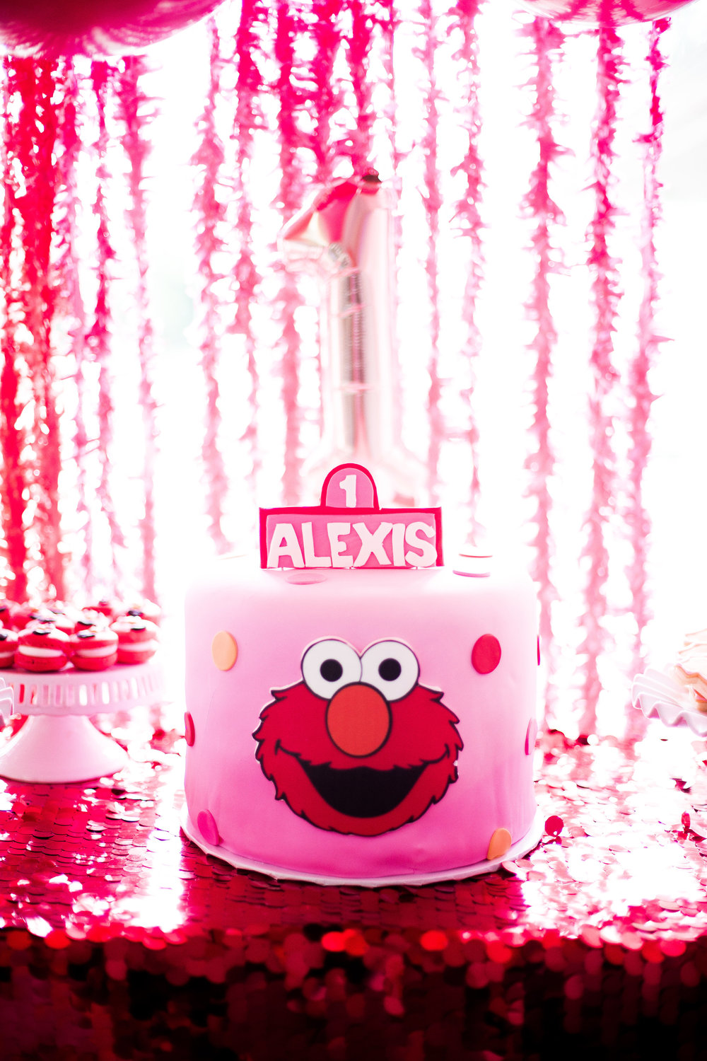 Alexis'_1st_Birthday_04.07.18_-2.jpg
