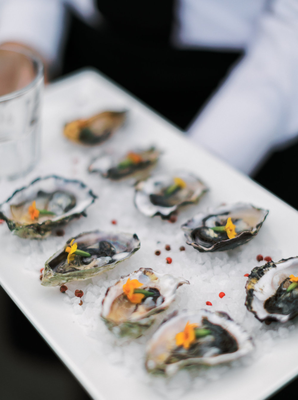 80. Oysters.jpg