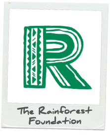 Rainforest Foundation.jpg