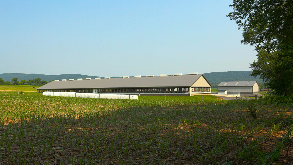 new barns.jpg