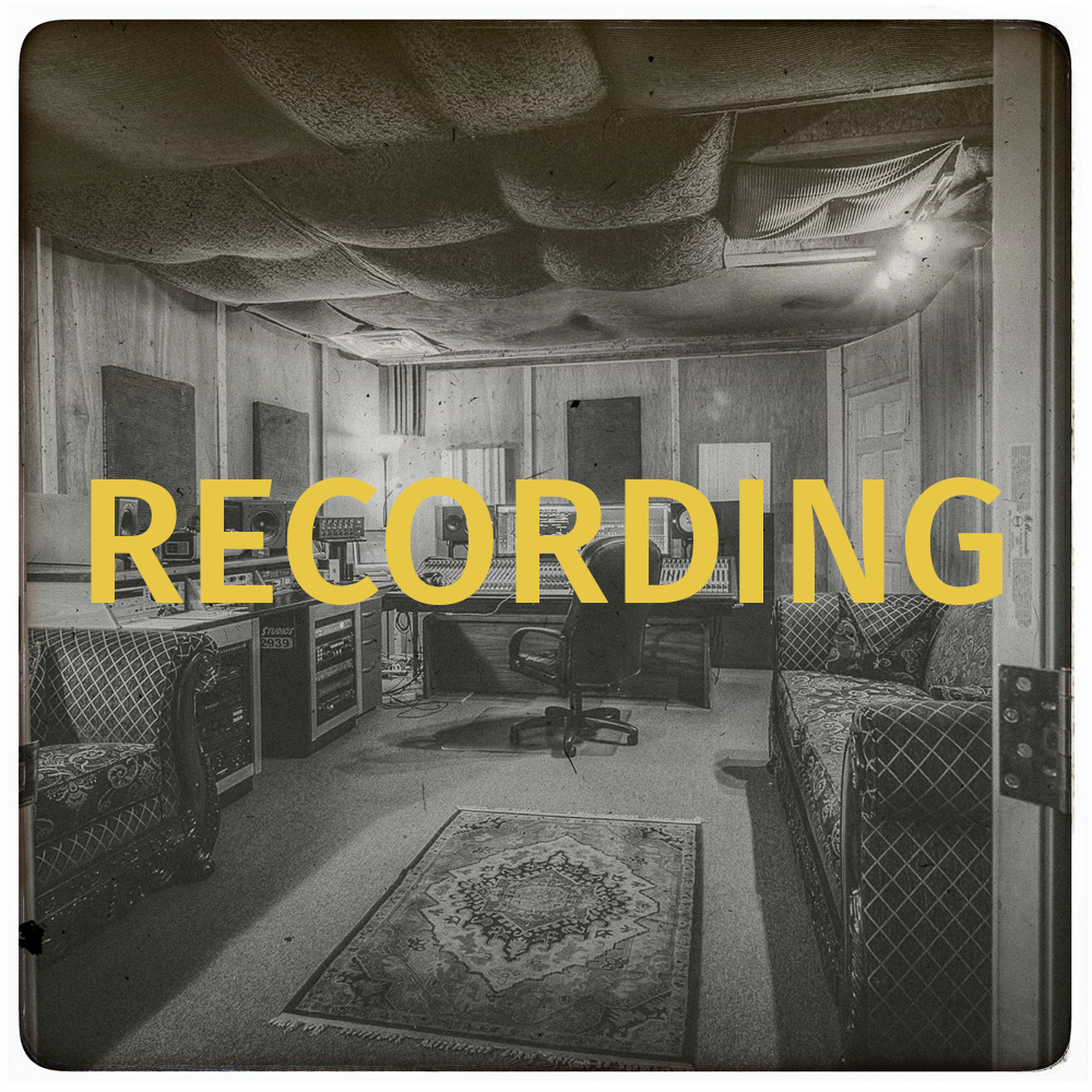 INFUSED STUDIOS SERVICES - RECORDING.jpg