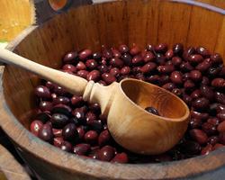 Olive oil for detox