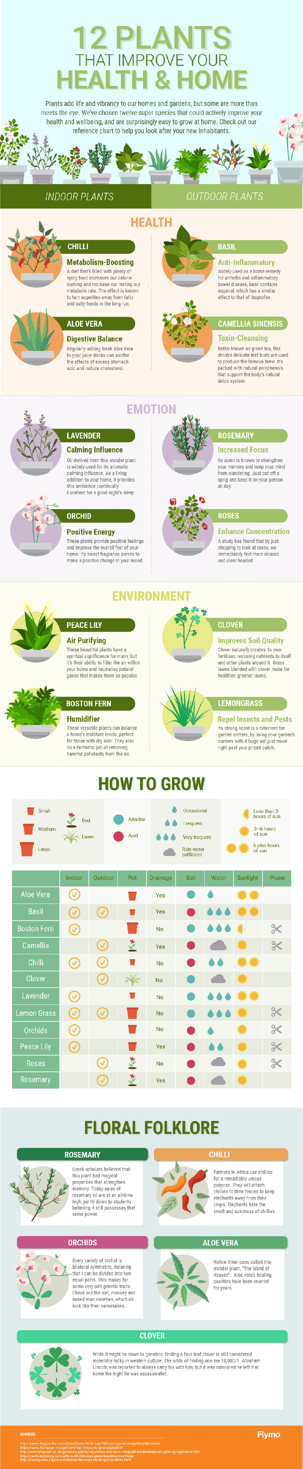 plants-that-improve-your-health-and-home-IP4453.png