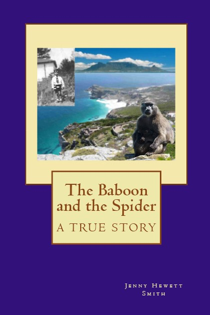 thebaboonandthespiderCover for signs.jpg