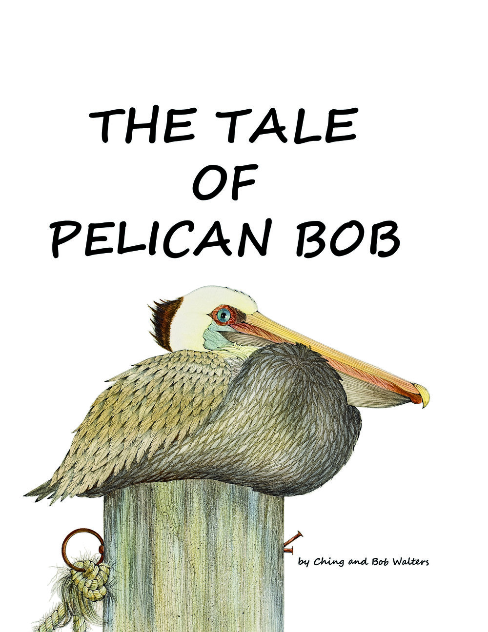 PELICAN BOB COVER front only.jpg