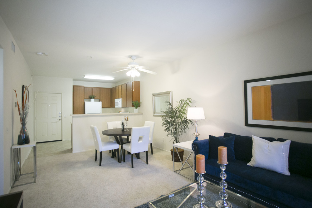 Silverhawk Living Space