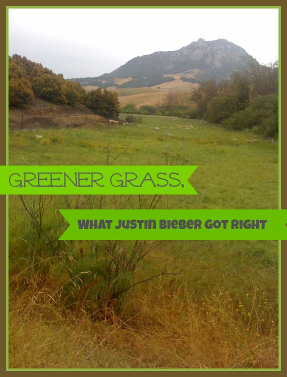 Greener Grass, What Justin Bieber Got Right.jpg