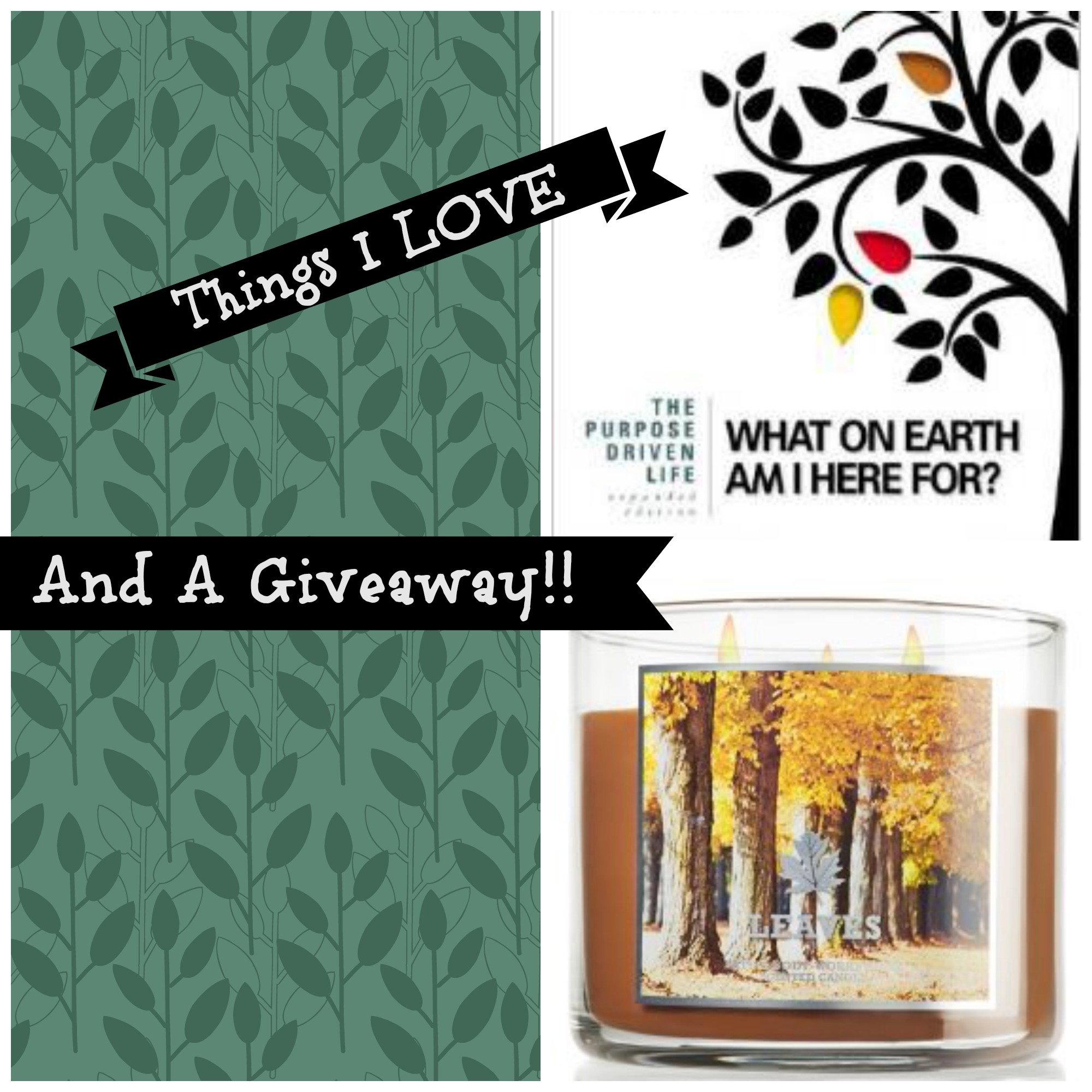 Things I LOVE And A Giveaway