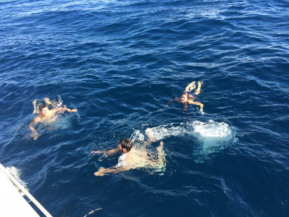 Swimming in the Gulf Stream
