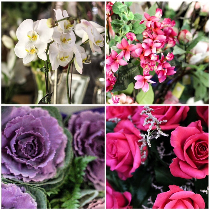 flower gallery .jpg