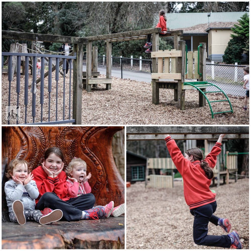 ferny creek playground1.jpg