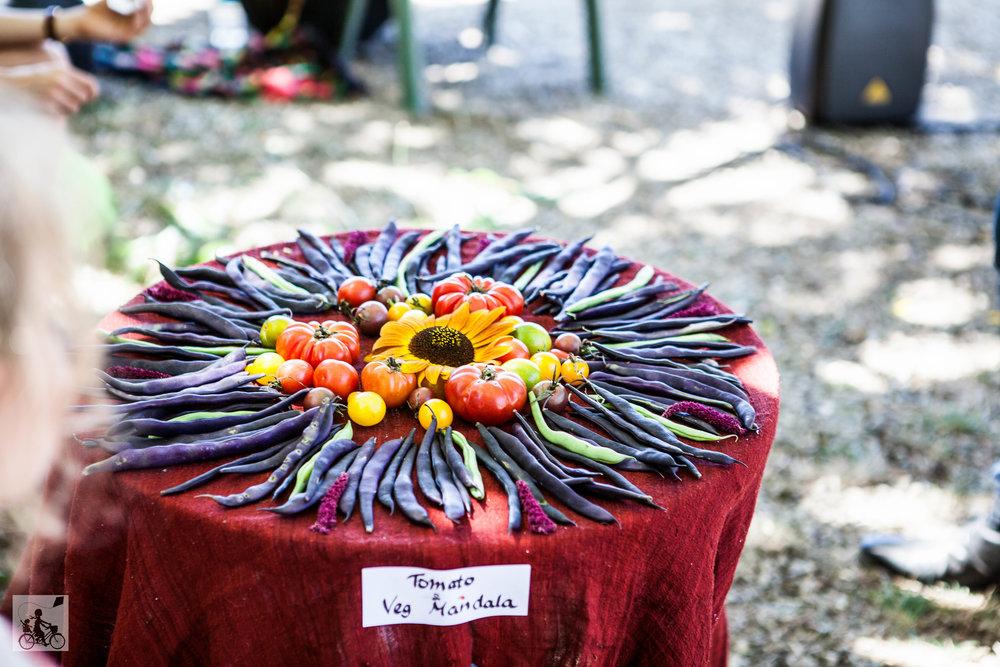 Mamma Knows East - Tomato festival PEACE farm