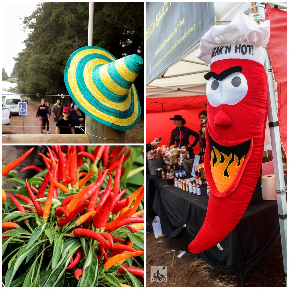 Mamma Knows East - Herb and Chilli Festival