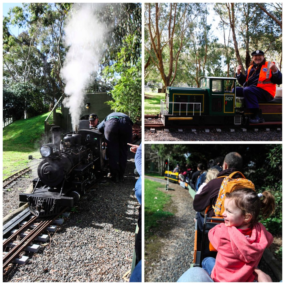Box Hill Miniature Railway 1.jpg