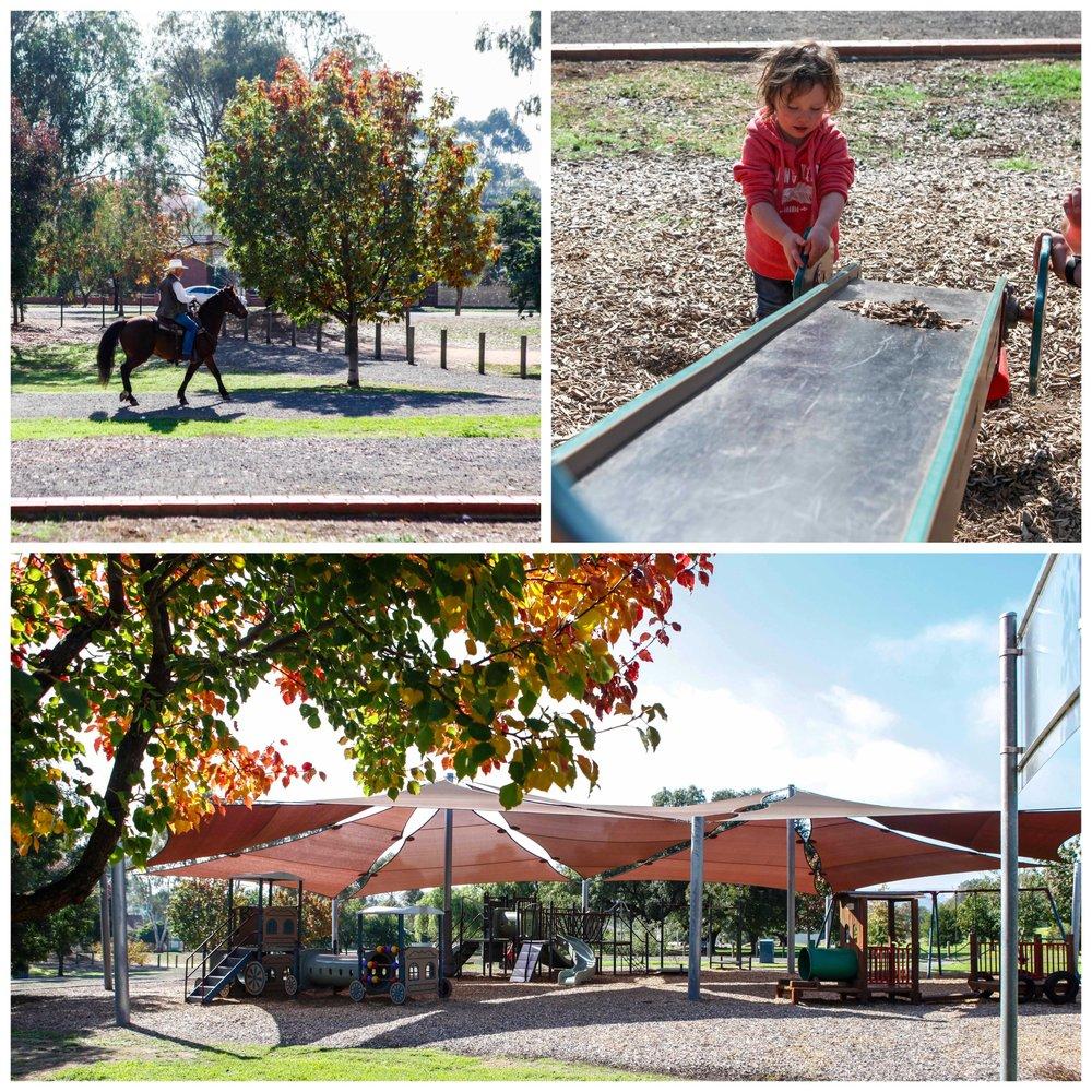 yea playground2.jpg