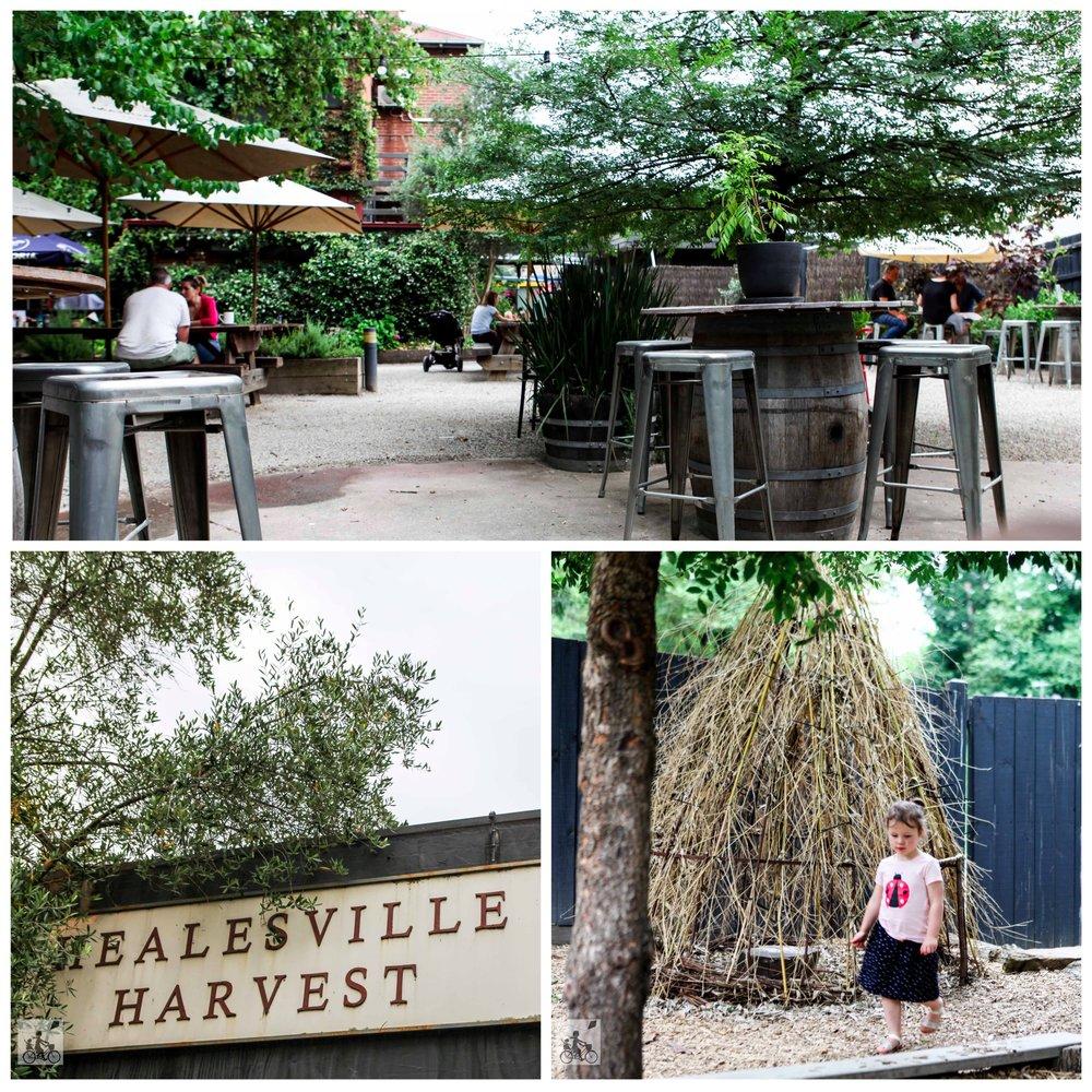 Mamma Knows East - Healesville Harvest 1.jpg