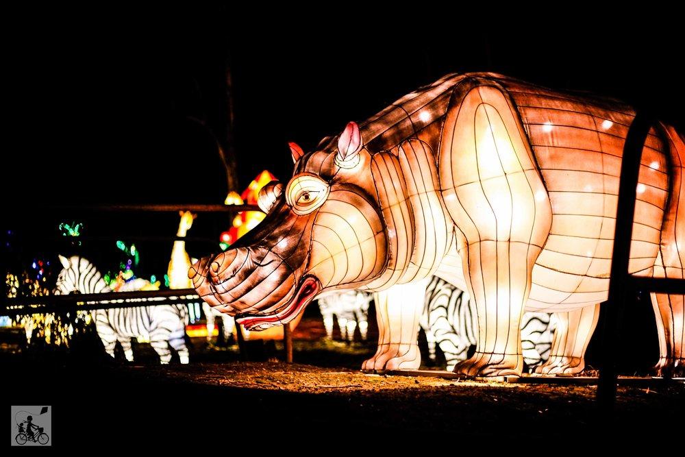 Dandenong Festival of Light (91 of 119).jpg