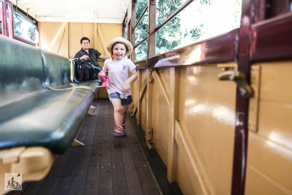 puffing billy (81 of 123).jpg
