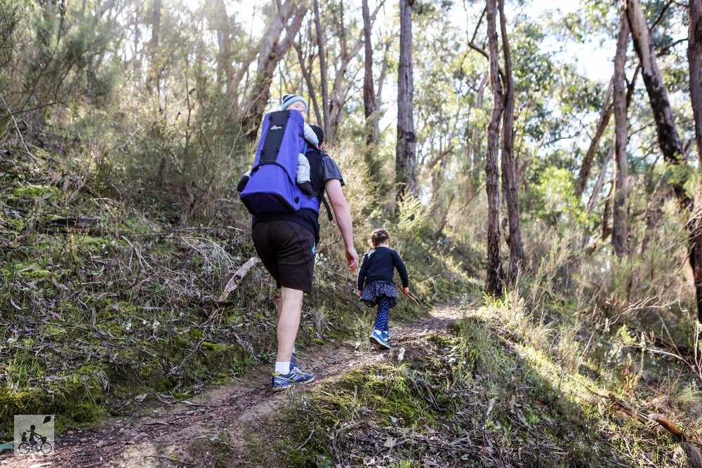 Whipstick Gully, Warrandyte- Mamma Knows East (31 of 49).jpg
