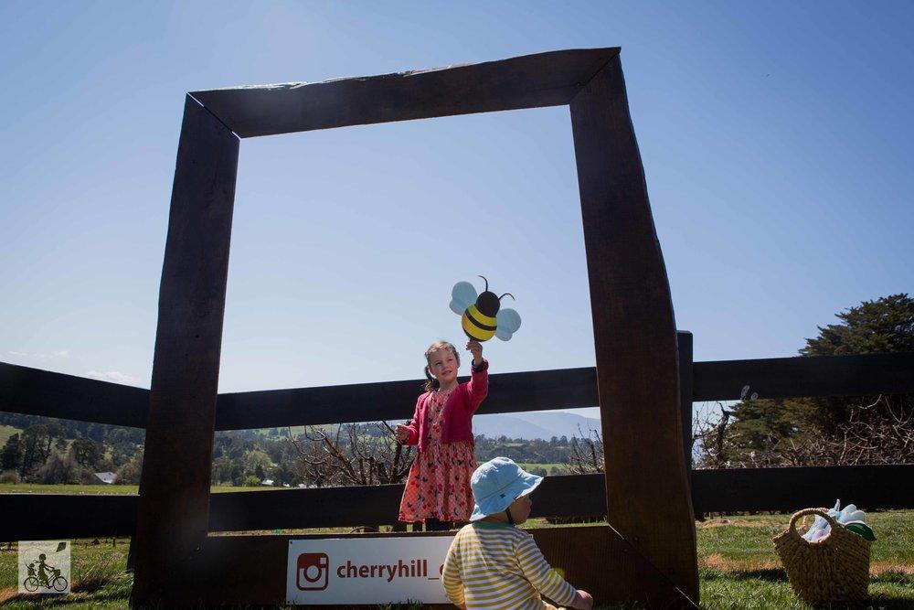 CherryHill blossom festival - Mamma Knows East (23 of 35).jpg
