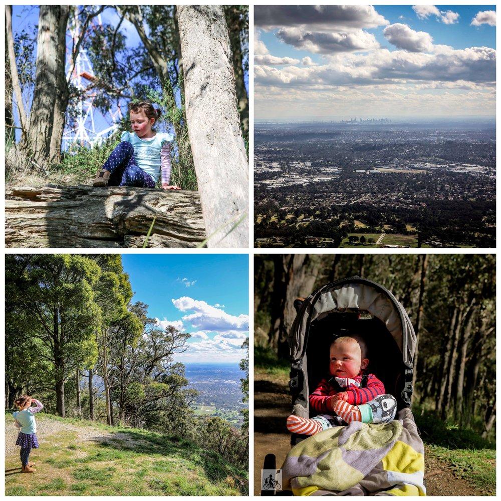 01 Burkes Track, Mt Dandenong - Mamma Knows East (1 of 46).jpg