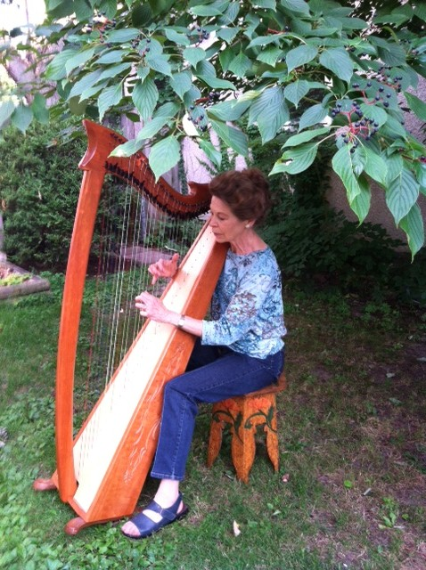Trudy's Irish harp